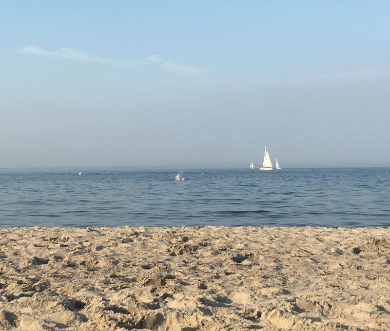 Ostsee-Monatsrücklick August 2019
