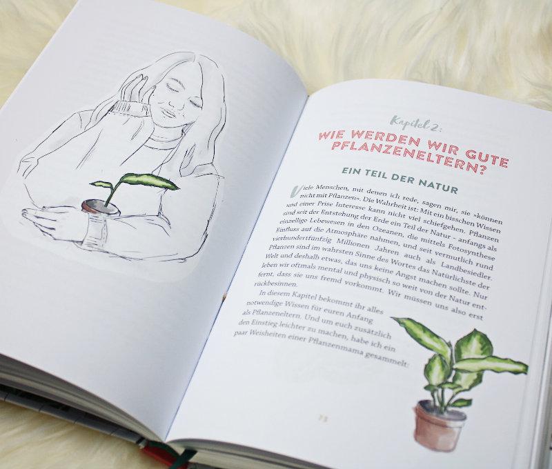 Aufblühen Was Zimmerpflanzen mit Depressionen zu tun haben
