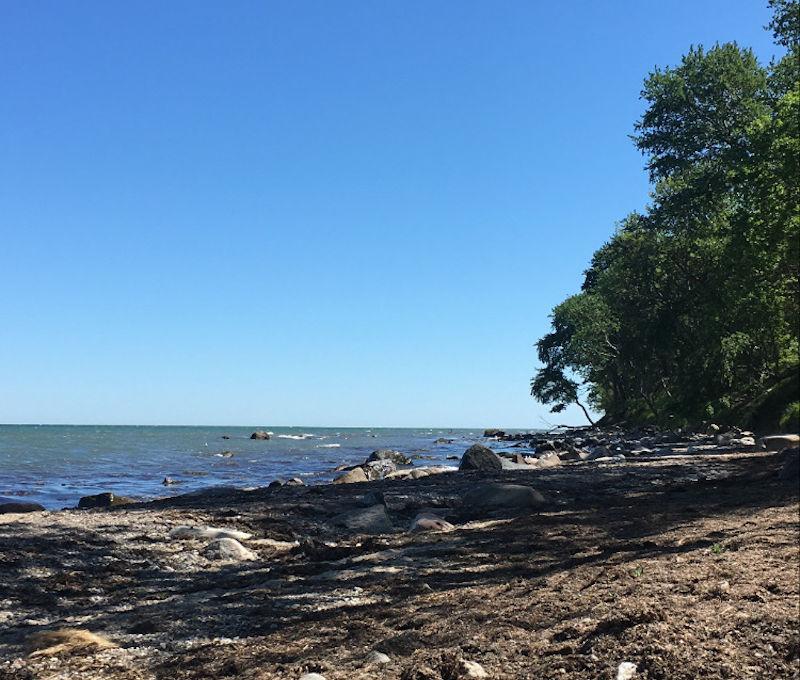 Strand von Fehmarn-Monatsrückblick 2020